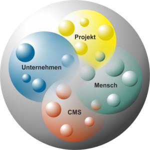 Systemeinführung ist ein komplexer Prozess