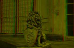 Löwe Bild 7